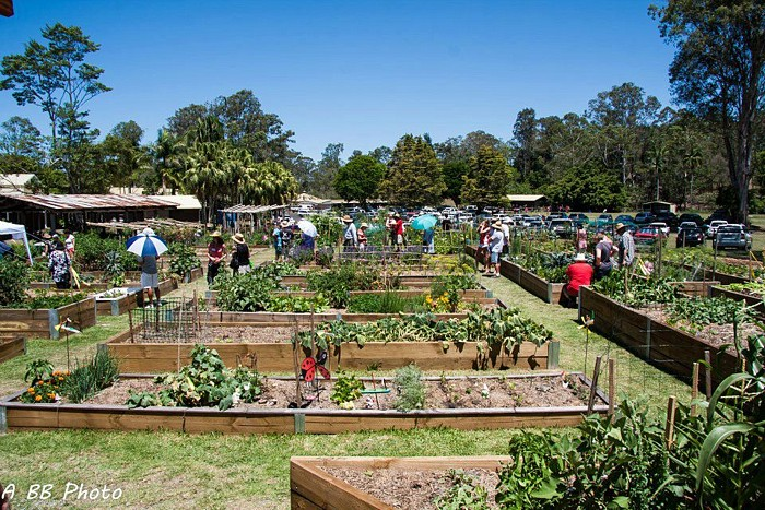 Community Gardens at CPP